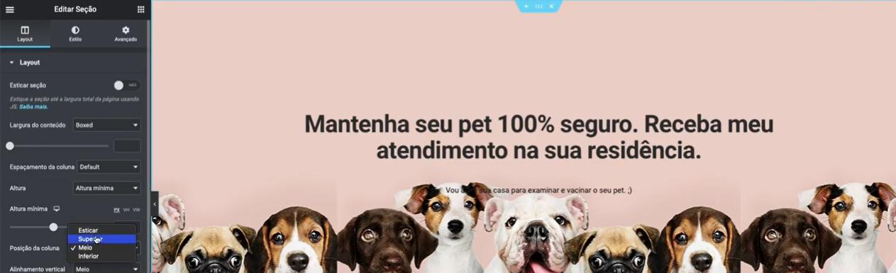 Elementor Pro: Como Fazer um Site de Veterinária do ZERO - Guilherme Laschuk